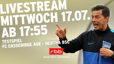 Hertha-Trainer Ante Covic gestikuliert (Quelle: Foto: imago images/Contrast; Montage: rbb)