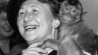 Katharina Heinroth mit Schweinsaffe 1955 in Zoo Berlin (Quelle: 2016 Zoo Berlin)