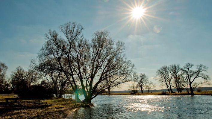 52edb0bc30 Winter kann Defizite nach Dürresommer in Berlin und Brandenburg nicht  ausgleichen | rbb24