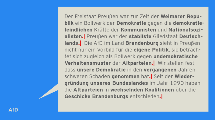 Visualisierung: Textanalyse AfD. (Quelle: rbb|24)