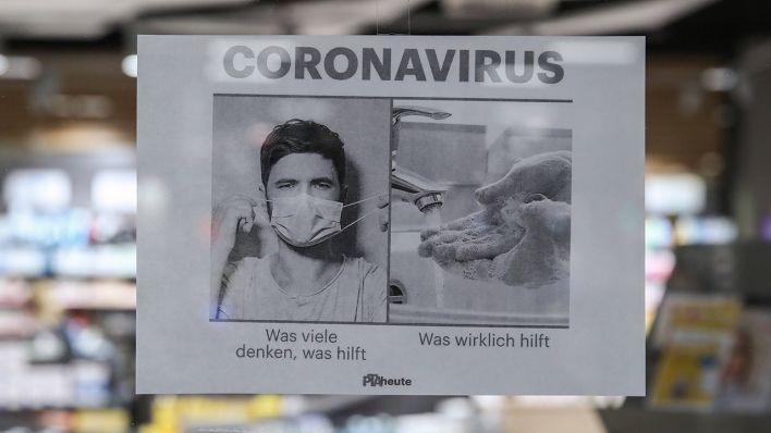 corona virus übertragung tier