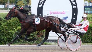 Robin Bakker mit Wild West Diament in einem Vorlauf in Mariendorf. Quelle: imago images/Marius Schwarz