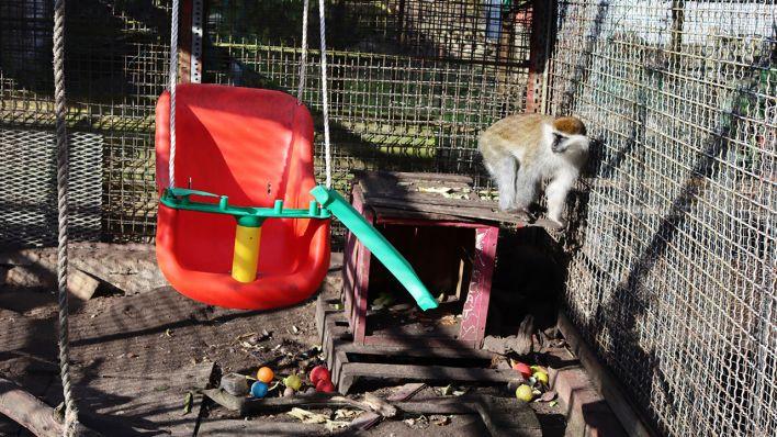 Zoo Nauen