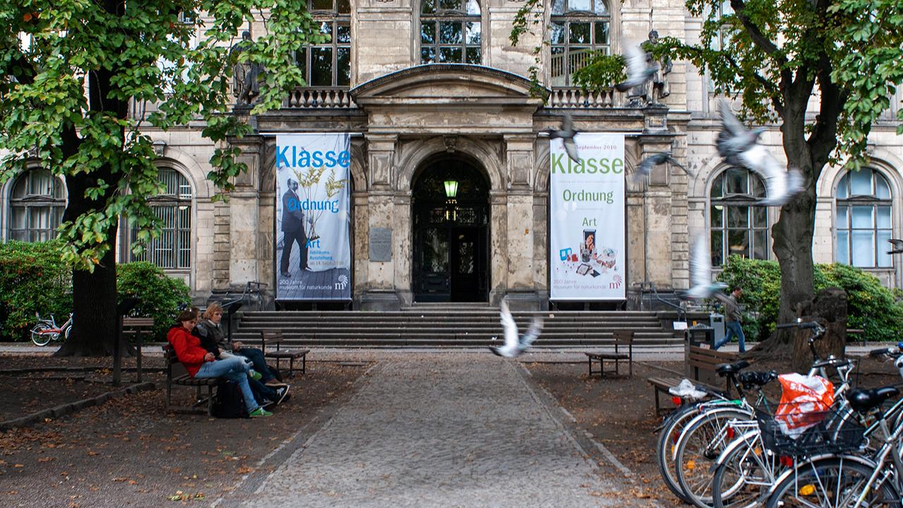 Das Berliner Naturkundemuseum am 01.02.2020. (Quelle: dpa/Sergi Reboredo)