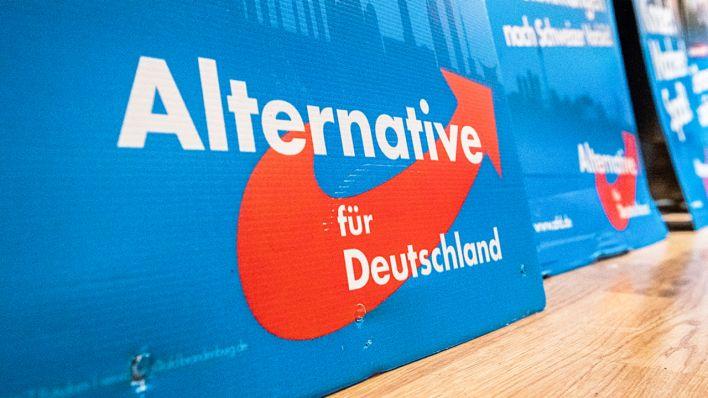 Afd Wahlprognose Bundestagswahl 2021