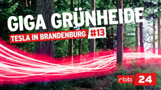 Cover des Tesla-Podcasts Giga Grünheide – Tesla in Brandenburg (Quelle: rbb)