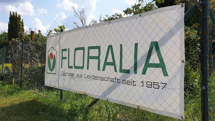 Insolvente Gartnerei Floralia Stellt Gartenbau Bereich Zum